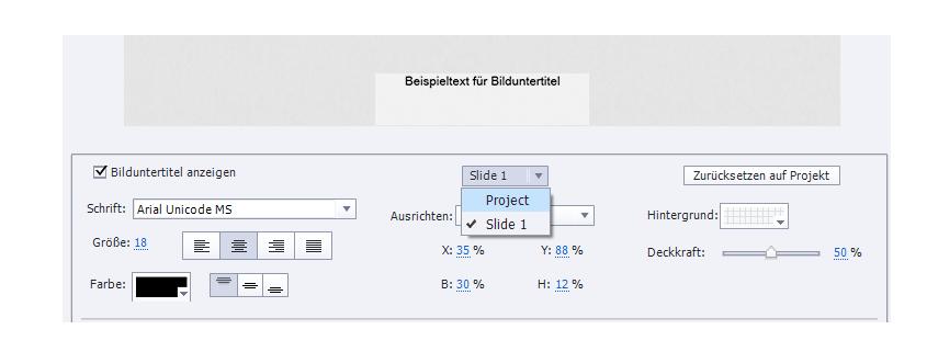 Adobe Captivate Untertitel einfügen