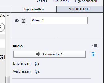Adobe Captivate - Videodemo mit Audio